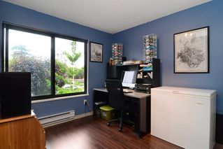 "Photo 33: 3336 VINCENT Street in Port Coquitlam: Glenwood PQ Townhouse for sale in ""Burkview"" : MLS®# R2110578"