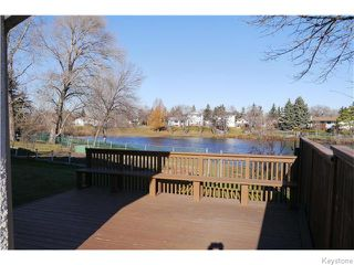 Photo 16: 63 Lakeshore Road in Winnipeg: Waverley Heights Residential for sale (1L)  : MLS®# 1629033