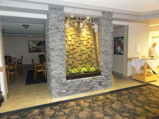 """Photo 15: 431 22323 48 Avenue in Langley: Murrayville Condo for sale in """"AVALON GARDENS"""" : MLS®# R2134591"""