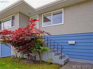 Photo 2: 1835 Taylor Street in VICTORIA: SE Camosun Revenue Duplex for sale (Saanich East)  : MLS®# 379075