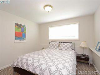 Photo 13: 1835 Taylor Street in VICTORIA: SE Camosun Revenue Duplex for sale (Saanich East)  : MLS®# 379075