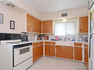 Photo 11: 1835 Taylor Street in VICTORIA: SE Camosun Revenue Duplex for sale (Saanich East)  : MLS®# 379075