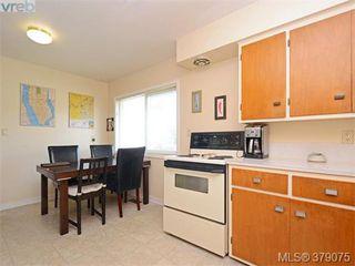 Photo 12: 1835 Taylor Street in VICTORIA: SE Camosun Revenue Duplex for sale (Saanich East)  : MLS®# 379075