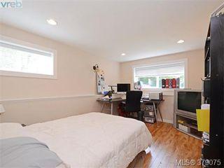 Photo 8: 1835 Taylor Street in VICTORIA: SE Camosun Revenue Duplex for sale (Saanich East)  : MLS®# 379075