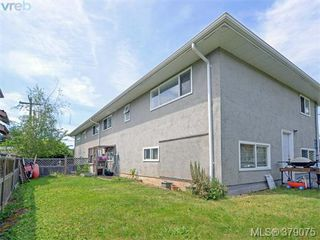Photo 17: 1835 Taylor Street in VICTORIA: SE Camosun Revenue Duplex for sale (Saanich East)  : MLS®# 379075