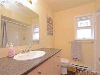 Photo 6: 1835 Taylor Street in VICTORIA: SE Camosun Revenue Duplex for sale (Saanich East)  : MLS®# 379075