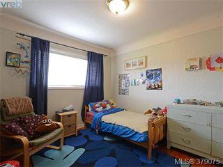 Photo 15: 1835 Taylor Street in VICTORIA: SE Camosun Revenue Duplex for sale (Saanich East)  : MLS®# 379075