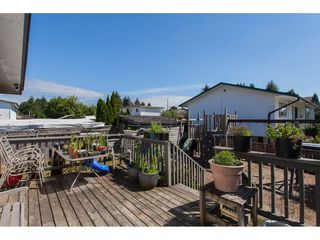 Photo 17: 32045 WESTVIEW Avenue in Mission: Mission BC House for sale : MLS®# R2186441