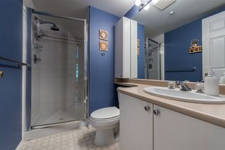 Photo 11: 211 1519 GRANT AVENUE in Port Coquitlam: Glenwood PQ Condo for sale : MLS®# R2185848
