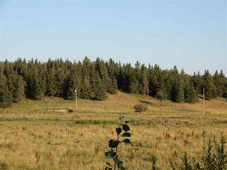 Main Photo: Township 570 Range Road 240: Rural Sturgeon County Rural Land/Vacant Lot for sale : MLS®# E4080007