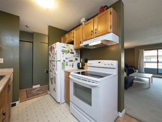 """Photo 14: 315 8591 WESTMINSTER Highway in Richmond: Brighouse Condo for sale in """"LANDSDOWNE GROVE"""" : MLS®# R2209717"""