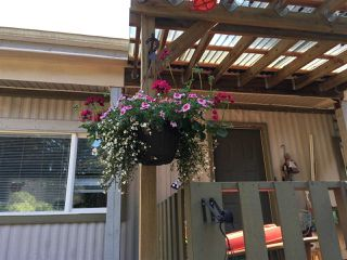 """Photo 20: 228 1830 MAMQUAM Road in Squamish: Northyards Manufactured Home for sale in """"TIMBERTOWN"""" : MLS®# R2236311"""