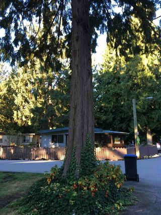 """Photo 17: 228 1830 MAMQUAM Road in Squamish: Northyards Manufactured Home for sale in """"TIMBERTOWN"""" : MLS®# R2236311"""