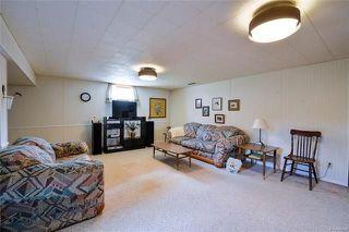 Photo 12: 423 Aldine Street in Winnipeg: Silver Heights Residential for sale (5F)  : MLS®# 1811538