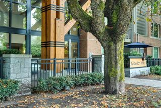 "Photo 20: 324 119 W 22ND Street in North Vancouver: Central Lonsdale Condo for sale in ""ANDERSON WALK"" : MLS®# R2303070"