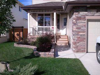 Photo 24: 84 NORTH RIDGE Drive: St. Albert House for sale : MLS®# E4148846