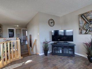 Photo 17: 84 NORTH RIDGE Drive: St. Albert House for sale : MLS®# E4148846
