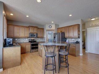 Photo 10: 84 NORTH RIDGE Drive: St. Albert House for sale : MLS®# E4148846