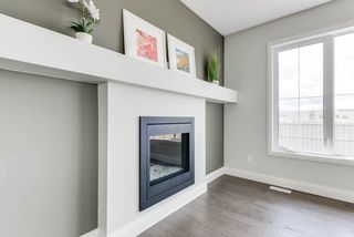 Photo 28: 8539 CUSHING Place in Edmonton: Zone 55 House for sale : MLS®# E4151679