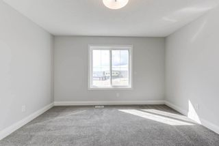 Photo 19: 8539 CUSHING Place in Edmonton: Zone 55 House for sale : MLS®# E4151679