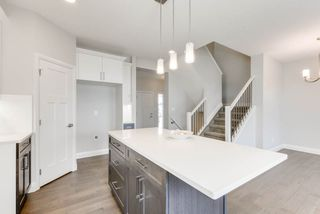 Photo 29: 8539 CUSHING Place in Edmonton: Zone 55 House for sale : MLS®# E4151679