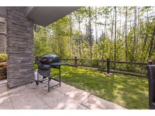 "Photo 19: 103 33318 E BOURQUIN Crescent in Abbotsford: Central Abbotsford Condo for sale in ""NATURES GATE"" : MLS®# R2363358"
