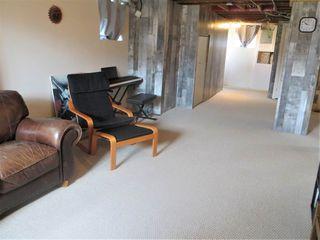 Photo 15: 6303 118 Avenue in Edmonton: Zone 09 House for sale : MLS®# E4156216