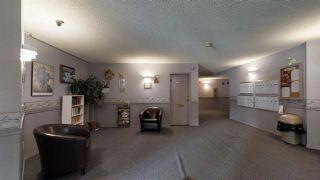 Photo 18: 113 2508 50 Street NW in Edmonton: Zone 29 Condo for sale : MLS®# E4158552
