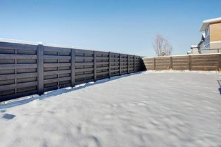 Photo 28: 976 SETON Circle SE in Calgary: Seton Semi Detached for sale : MLS®# C4276345