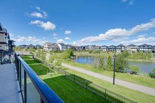Photo 15: 3622 ALLAN Drive in Edmonton: Zone 56 House for sale : MLS®# E4212833
