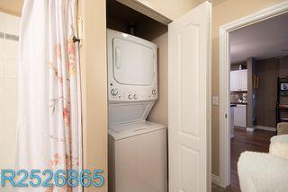 """Photo 28: 205 22230 NORTH Avenue in Maple Ridge: West Central Condo for sale in """"SOUTHRIDGE TERRACE"""" : MLS®# R2526865"""