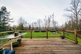 Photo 19: 17285 65A Avenue in Surrey: Cloverdale BC Agri-Business for sale (Cloverdale)  : MLS®# C8036013