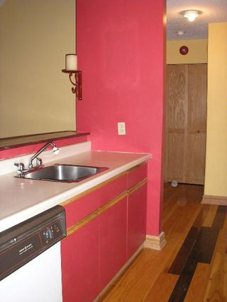 Photo 6: 301-176 Thomas Berry St.: Residential for sale (St. Boniface)
