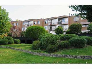 Photo 1: 11 11900 228TH Street in Maple Ridge: East Central Condo for sale : MLS®# V959863
