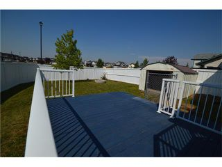 Photo 21: 1007 CREEK SPRINGS Rise NW: Airdrie House for sale : MLS®# C4022944