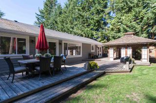 Photo 18: 2192 171 Street in Surrey: Pacific Douglas House for sale (South Surrey White Rock)  : MLS®# R2005300