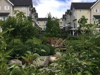 "Photo 24: 69 31032 WESTRIDGE Place in Abbotsford: Abbotsford West Townhouse for sale in ""Harvest"" : MLS®# R2084069"