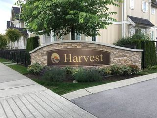 "Photo 25: 69 31032 WESTRIDGE Place in Abbotsford: Abbotsford West Townhouse for sale in ""Harvest"" : MLS®# R2084069"