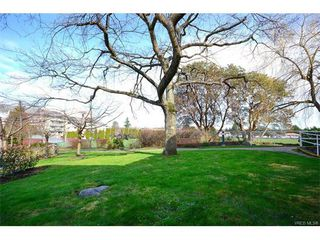 Photo 13: 206 1485 Garnet Rd in VICTORIA: SE Cedar Hill Condo for sale (Saanich East)  : MLS®# 736817