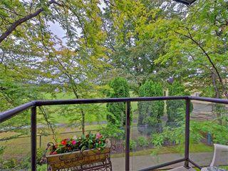 Photo 10: 206 1485 Garnet Rd in VICTORIA: SE Cedar Hill Condo for sale (Saanich East)  : MLS®# 736817
