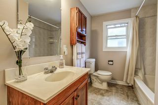 Photo 16: 515 Pinedale Avenue in Burlington: Appleby House (Sidesplit 4) for sale : MLS®# W3845546