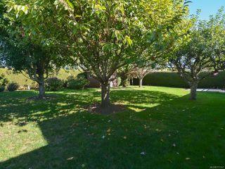 Photo 54: 2070 MURPHY Avenue in COMOX: CV Comox (Town of) House for sale (Comox Valley)  : MLS®# 771747