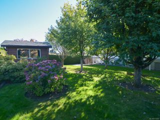 Photo 53: 2070 MURPHY Avenue in COMOX: CV Comox (Town of) House for sale (Comox Valley)  : MLS®# 771747