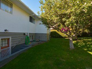 Photo 48: 2070 MURPHY Avenue in COMOX: CV Comox (Town of) House for sale (Comox Valley)  : MLS®# 771747