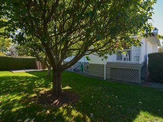 Photo 51: 2070 MURPHY Avenue in COMOX: CV Comox (Town of) House for sale (Comox Valley)  : MLS®# 771747