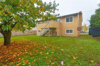 Photo 17: 567 Judah St in VICTORIA: SW Glanford House for sale (Saanich West)  : MLS®# 773869