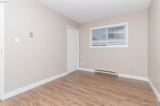 Photo 7: 567 Judah St in VICTORIA: SW Glanford House for sale (Saanich West)  : MLS®# 773869