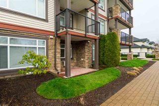 Photo 18: 114 19939 55A Avenue in Langley: Langley City Condo for sale : MLS®# R2248013