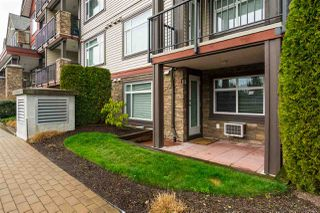 Photo 19: 114 19939 55A Avenue in Langley: Langley City Condo for sale : MLS®# R2248013