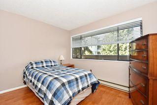 Photo 17: 168 7293 MOFFATT Road in Richmond: Brighouse South Condo for sale : MLS®# R2261480